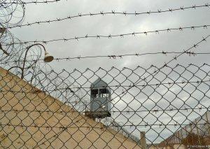 Azərbaycanda axtarışda olan cinayətkarların 47-si uşaq olub