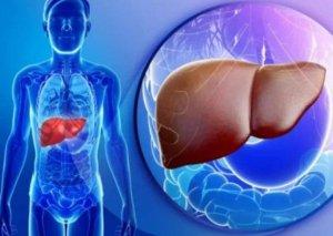 Qaraciyəri yeniləyən QİDALAR