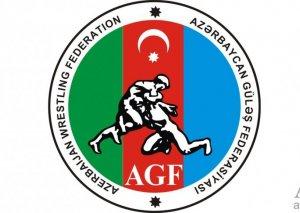 Azərbaycan Güləş Federasiyasının rəhbərliyində dəyişiklik olub
