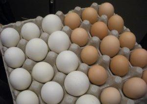 Yumurta, mərci, düyü bahalaşdı - Qonşuda