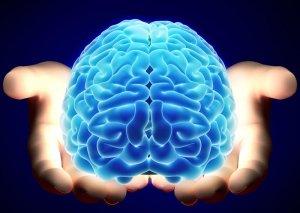 Beynin ən çox dəyişikliyə uğrayan hissələri aşkarlanıb