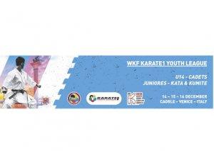 Karateçilərimiz İtaliyada Gənclər liqası turnirində iştirak edəcək