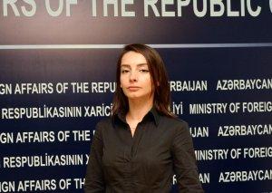 Azərbaycan XİN: Rəsmi Paris Mehman Hüseynov məsələsinə münasibət bildirməkdənsə, Fransada nümayişçilərə qarşı zorakılığı dəyərləndirsin