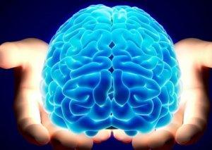 Beyninizi kimlər oxuyacaq?