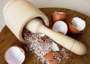 Yumurta qabıqlarını atmamaq üçün 5 səbəb –