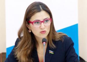 Deputat: Beynəlxalq birlik Ermənistan müdafiə nazirinin bəyanatına münasibət bildirməlidir