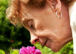 Yaşlı insanlarda qoxubilmənin itməsi ölümün yaxınlaşdığını göstərir – ALİMLƏR