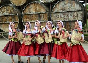 Şamaxı çariçası, hava şarı, əfsanəvi şou - I Azərbaycan Üzüm və Şərab Festivalı