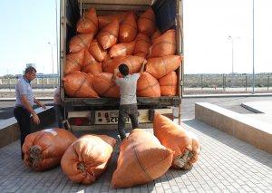 Regional məntəqələrdə toplanan yunun Sumqayıtdakı fabrikə təhvil verilməsinə başlanılıb