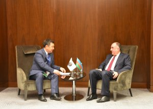 Elmar Məmmədyarov Türk Akademiyasının Prezidenti ilə görüşüb