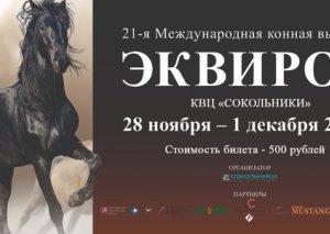 Moskvada ilk dəfə Qarabağ atlarının sərgisi keçiriləcək