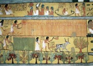 Dünyanın ən qədim şəkilli kitabı tapılıb