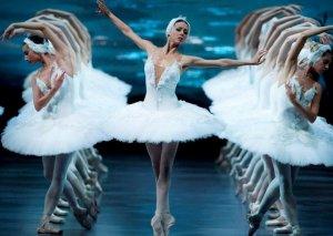 """""""Qu gölü"""" üçün rus balet ulduzları gəlir"""