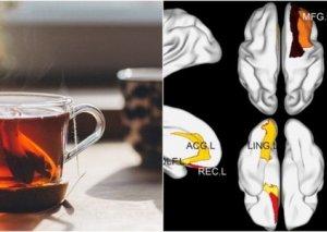 Mütəmadi olaraq çay içmək beyin sağlamlığına təsir edir – ARAŞDIRMA