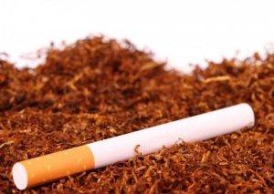 Bu məhsullar nikotin asılılığını azaltmağa kömək edir