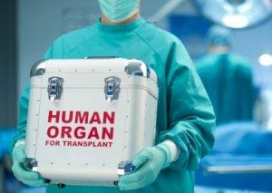 Azərbaycanda canlı donordan götürüləcək orqanlar müəyyənləşdi