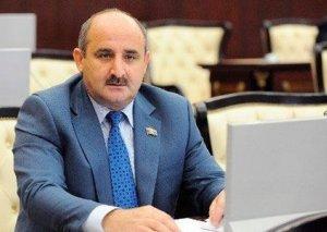 """""""Biz korrupsiyadan prezidentə sadiq kadrlarla xilas ola bilərik"""" - Çingiz Qənizadə"""