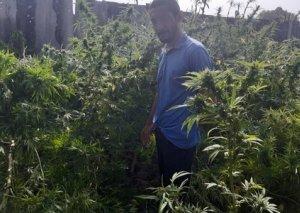 Sabirabad sakinindən narkotik və odlu silah götürülüb