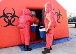 Honq Konqda ilk dəfə yüksək patogenli quş qripi ştammı aşkar edilib