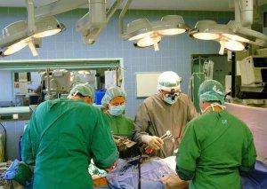 Azərbaycanda transplantasiya əməliyyatına ehtiyacı olan insanların siyahısı hazırlanır