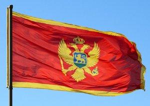 Monteneqrolu nazir: Dövlət xidmətlərinin çatdırılmasında Azərbaycan modelindən istifadə edəcəyik