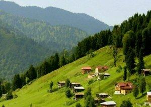 Azərbaycana səfər təşkil edən turizm şirkətlərinə subsidiyalar verilə bilər
