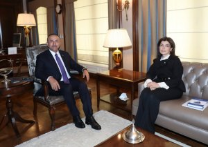 Beynəlxalq Türk Mədəniyyəti və İrsi Fondunun türk dünyasının birliyi istiqamətində gördüyü işlər yüksək qiymətləndirilib