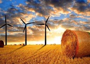 Yağıntılı hava aqrar sektora zərər vurur, yoxsa...