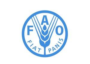 FAO Azərbaycanda 3 layihəyə start verəcək