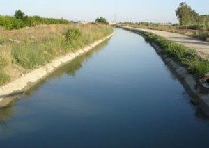 Siyəzəndə kanalda qadın meyiti tapılıb
