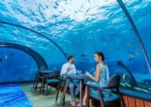 Dünyanın ən bahalı restoranları -