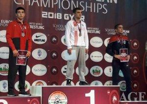 Güləşçilərimiz Avropa çempionatından 6 medalla qayıdır