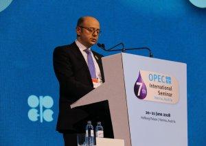 Pərviz Şahbazov: Gələcəkdə neftə qlobal tələbatın ödənilməsində çətinliklər ola bilər