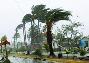 Çində tayfun səbəbindən 390 min nəfər təxliyə edilib