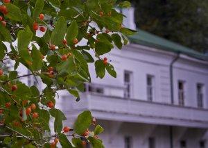 Yasnaya Polyanada Tolstoylar nəslinin nümayəndələrinin qurultayı açılıb