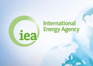 Fatih Birol: Azərbaycan Beynəlxalq Enerji Agentliyinin çox dəyərli tərəfdaşdır