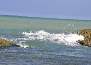 Ekoloji monitorinqlər zamanı Xəzər dənizinə tökülən 224 axar qeydə alınıb